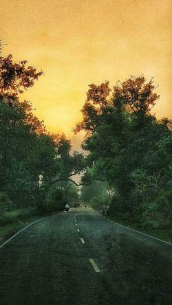 Heading Home at Dusk @gpmzn Lonely Road Dusk Dawn Sunrise Sunset Scenery EyeEm Best Shots Tree Sunset Sky Dramatic Sky Atmospheric Mood Moody Sky Tranquil Scene Countryside Idyllic Calm Silhouette