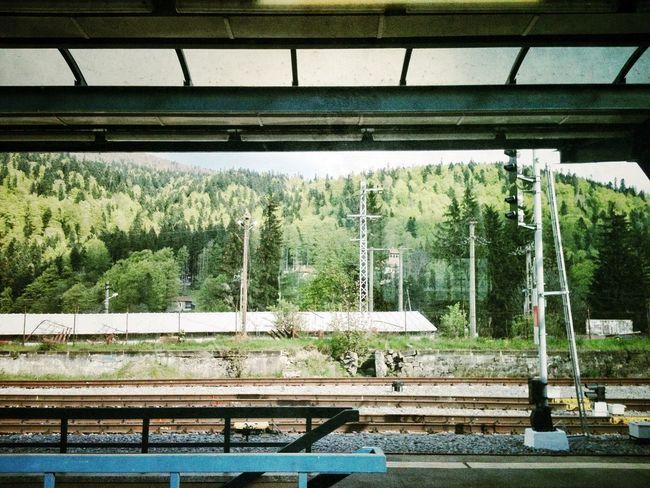 Train Station Nature Landscape