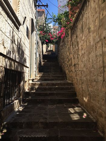 Cavtat old town streets Cavtat  Croatia Steps Flowers Pink Flowers Oldtown Picturesque IPhoneography