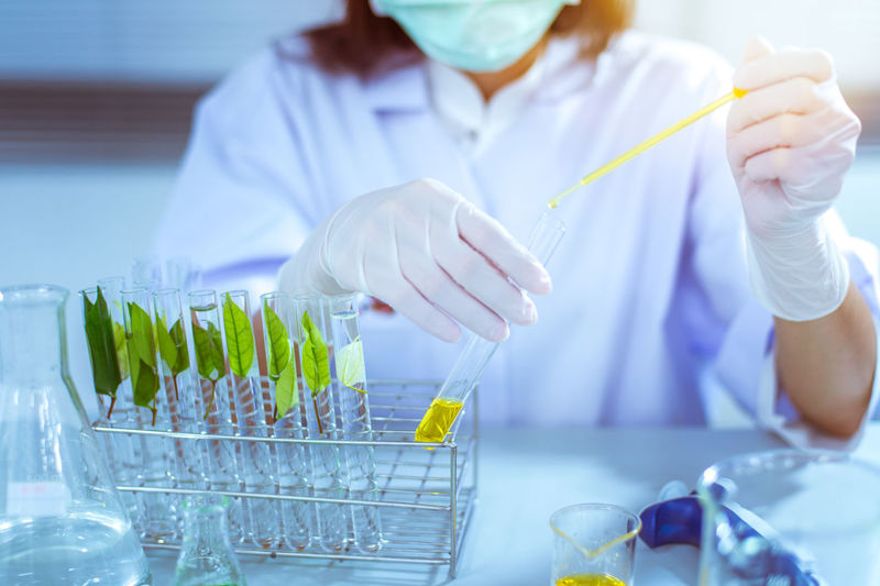 Female Scientist or Doctor With Green Solution In Laboratory - Stock Photo A female doctor or medical examiner looking at a test tube of a green solution in a laboratory. Analyzing Biochemistry Biology Biotechnology Clothing Education Focus On Foreground Front View Healthcare And Medicine Holding Indoors  Lab Coat Laboratory Medical Research Occupation One Person Real People Research Science Scientific Experiment Scientist Surgical Glove Test Tube Rack Women