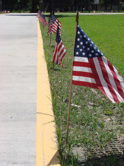 Flag Grass In A Row Multi Colored No People Patriotism Red Striped Sunlight Sunny