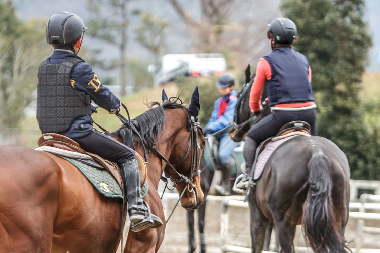 Hard to gallop on such a small track. Adult Animal Themes Close-up Competition Day Domestic Animals Headwear Horse Horse Life Horse Photography  Horse Riding Horseback Riding Horseriding Horses Jockey Mammal One Animal Outdoors People Real People Riding Two People Working Animal