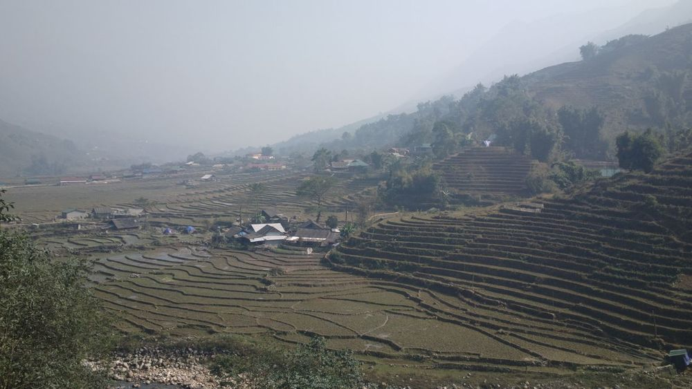 Agriculture Landscape Farm Field Mountain Rice Paddy Nature