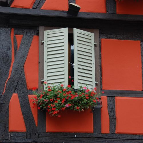 Looking up somewhere in Alsace, France Red Window Windows Façade Facades Colors Colours Colourful Colorful Decoration Decor Decorations Halftimbered Timbered House