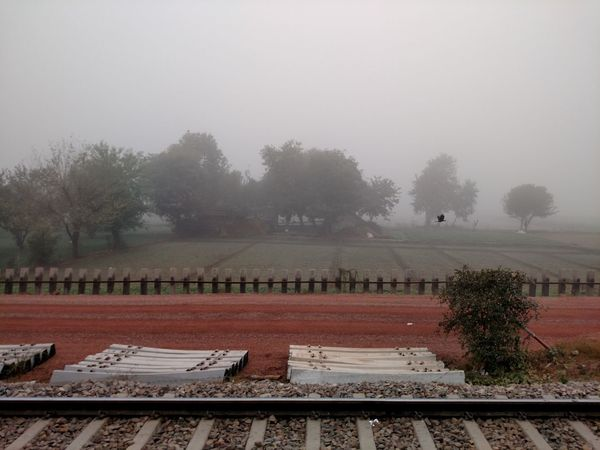 Trees India Fog Sky Nature Outdoors No People Day Tree Plant Indian Foggy Weather Transportation Travel Winter Nature Fields Bird Railway Line Flying Bird Red Mud Huts Village Traveling By Train Morning Finding New Frontiers Traveling Home For The Holidays