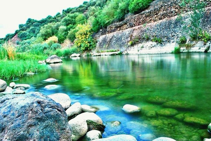 Rasfa water Nature Photography Photography Hanging Out Hello World Guelma Algeria