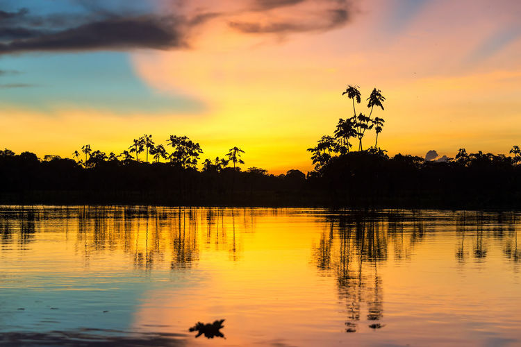 Colorful sunset deep in the Amazon Rainforest in Peru Amazon Amazonas Amazonia Background Beautiful Brazil Clouds Colorful Iquitos  Iquitos, Perú Jungle Lake Landscape Nature Peru Reflection River South America Sun Sunrise Sunset Tranquil Scene Tree Water Waterfront