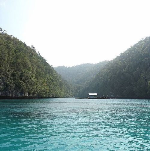 sowryy. good vibes only,please. Rajaampat