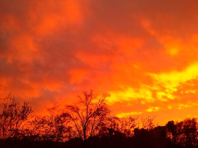 Sonnenuntergang Nature