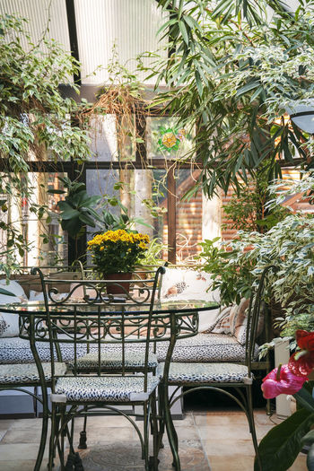Potted plants on table by building in yard