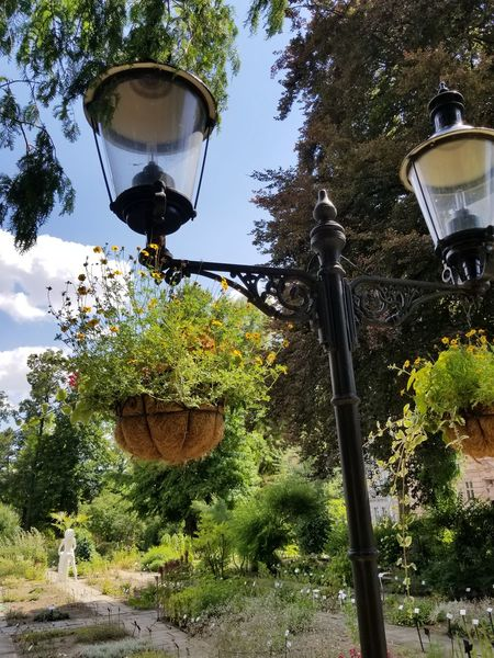 Lamp post and hanging baskets of flowers with sculpture in the background. Flowers Garden Botanical Garden Lamp Post Lamp Basket Statue Sculpture Art Garden Path Path Stepping Stone Trees Leaves Blue Sky Cloud Summer Tranquil Scene Nature Europe Tree Hanging Sky Plant Growing Blooming In Bloom