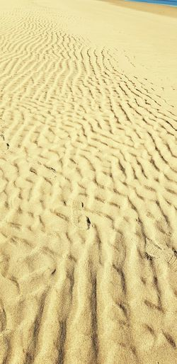 Wave traces on sand Land Sand Beach Nature Day Pattern No People FootPrint Scenics - Nature Remote Print Tranquil Scene High Angle View Backgrounds Landscape Beauty In Nature Outdoors Full Frame Sunlight Tranquility