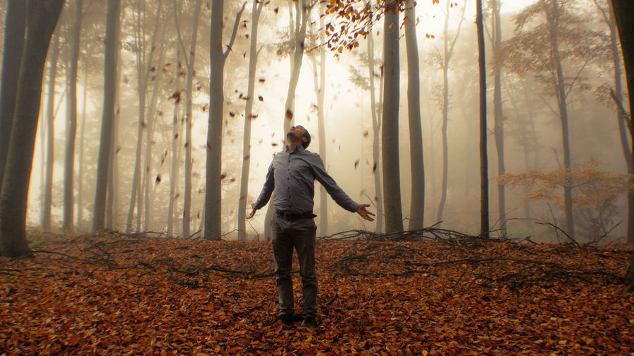 Dry Leaves Falling On Man Standing In Forest With Arms Outstretched During Foggy Weather