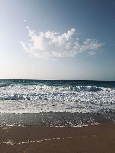 Wild ocean Ocean Bluewaters Dubai Beachphotography Beach Water Sky Sea Beach Land Scenics - Nature Beauty In Nature Horizon Sand
