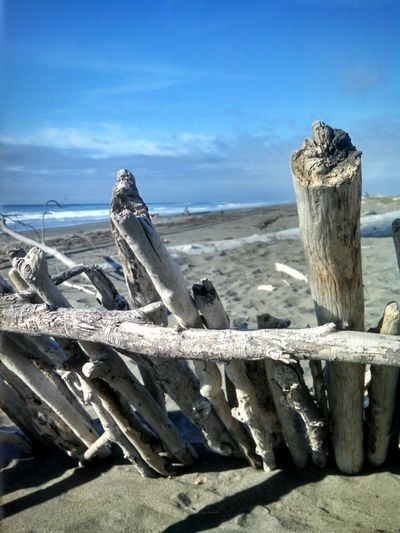 Driftwood Fort Wind Breaker Looking Out To Sea. Beachphotography StillLifePhotography Pacific Ocean California Humboldt County EyeEmBestPics Landscape Enjoying Life EyeEm Stilllife EyeEm Best Shots Capture The Moment From My Point Of View Smartphonephotography Mobile Photography Eye4photography  Eeyem Photography My Year My View EyeEm Gallery EyeEm Nature Lover Lobuephotos Wonderland