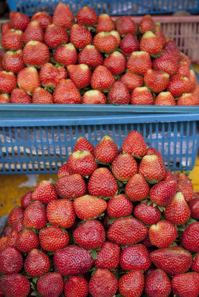 Strawberry at Candi Kuning Market Bali Market Tabanan, Bali, Indonesia Abundance Bedugul Berry Fruit Candi Kuning Container Food Food And Drink Freshness Fruit Healthy Eating Juicy Large Group Of Objects Market No People Red Retail  Ripe Strawberry Wellbeing