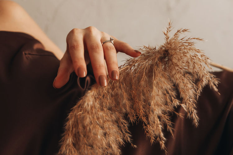 Close up female hand with engagement ring and autumn beige dry plant.