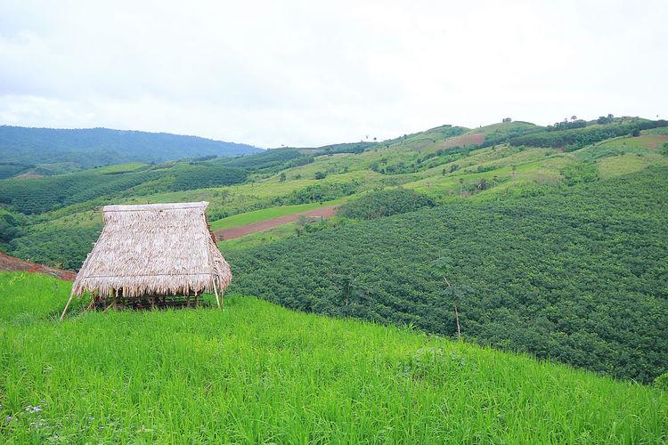 hut on hill