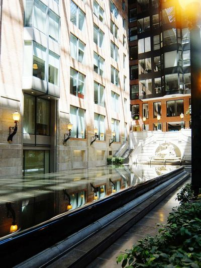 Montréal Architecture Built Structure CityBuilding Exterior Transportation No People Outdoors Illuminated Tree Day