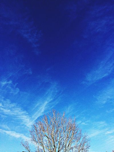Clouds And Sky Hugging A Tree Bluesky Oykosphotos hav a good day! Sunnydays coming.., ☀️☀️☀️?