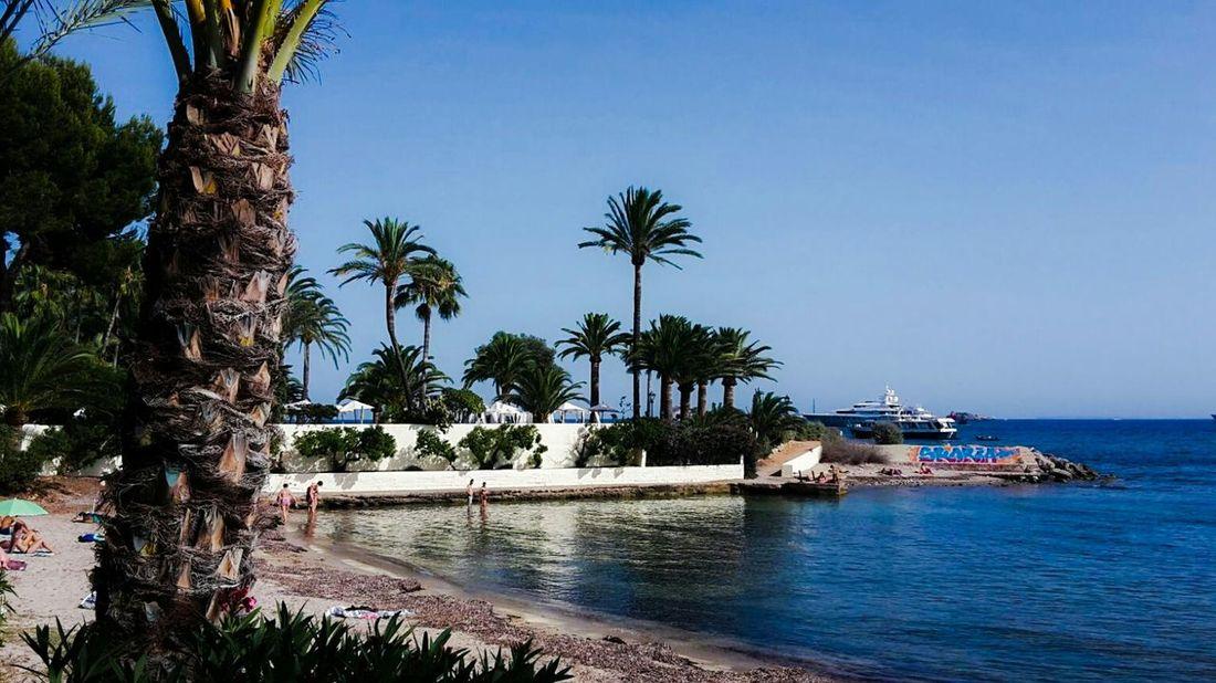 Ibiza Summerday Sunshine Insel Meer Blue Ocean Blue Sky Ibiza Stadt Balearen Isla De Ibiza Bucht Palmen Sonnenschirme Sonnenterrasse Strand