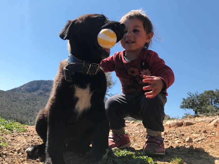 dog child and play Leisure Activity Nature Sunlight Real People Sky Childhood Lifestyles Two People Child Field Togetherness Casual Clothing Day Land Women People Plant Holding Emotion Outdoors