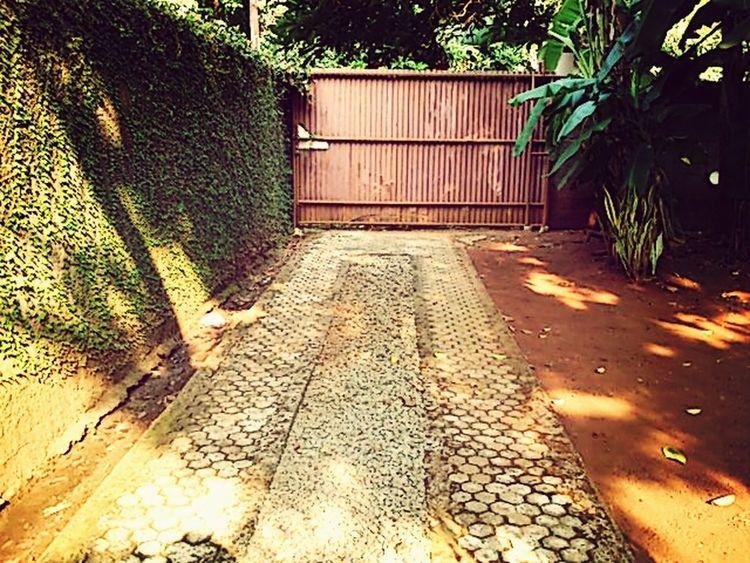 Gate Backyard Goodevening