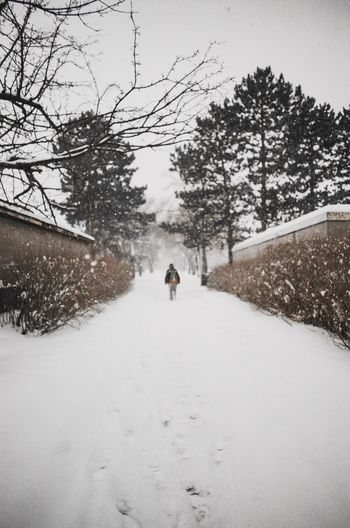 Rear view of person walking on snow covered road