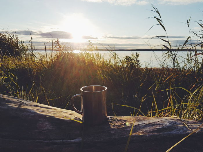 Mug on log by plants on field against sky during sunset