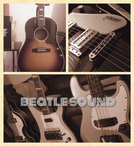 beatlesound Concert Thebeatles