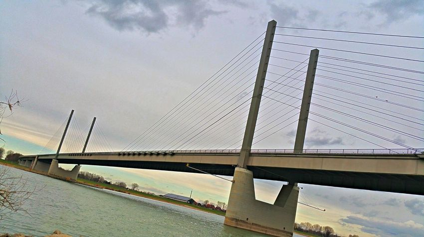 Architecture Bridge Bridge - Man Made Structure Built Structure Cable-stayed Bridge Cloud Cloud - Sky Cloudy Connection Day Engineering Kalkar Low Angle View Niedermörmter No People Outdoors Rees Rhein Rheinbrücke River Sky Suspension Bridge Transportation Water Weather