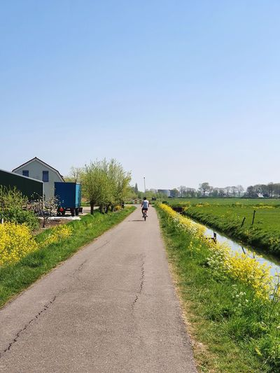 Road amidst field and buildings against clear sky
