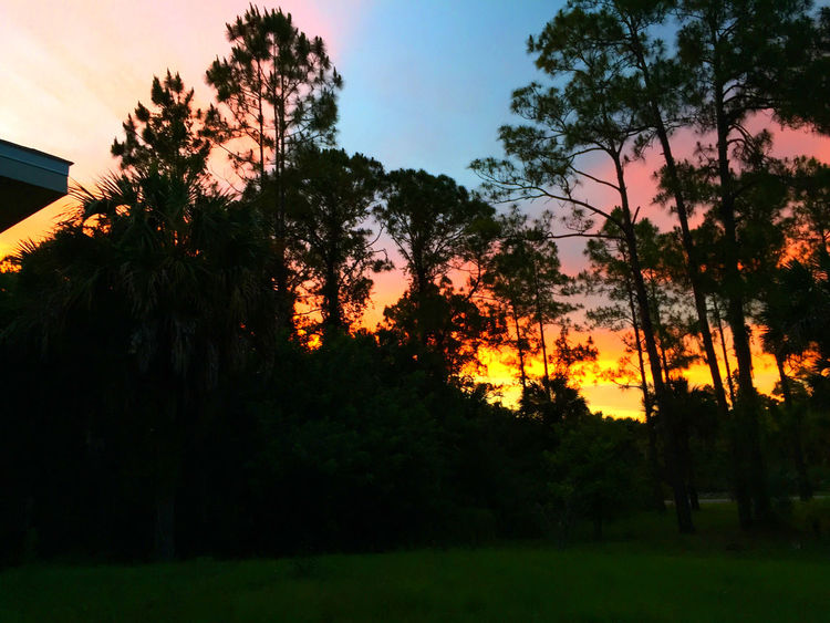 Beautiful Sunset from my front porch tonight. GoldenGateEstates
