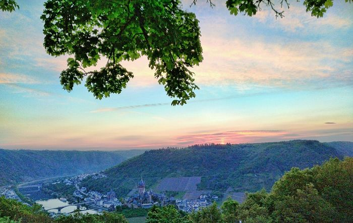 Tree Nature Growth Beauty In Nature Sunset Sky Scenics Cloud - Sky Outdoors Landscape Germany 🇩🇪 Deutschland Old Ruin Castle Cochem Moselle Valey Mosel Gibt Es Fiel Zu Sehen. Diese Wunderschöne Sunlight EyeEm Gallery Eyeemphotography EyeEm Waking Up And Looking At Adults Only Beauty In Nature