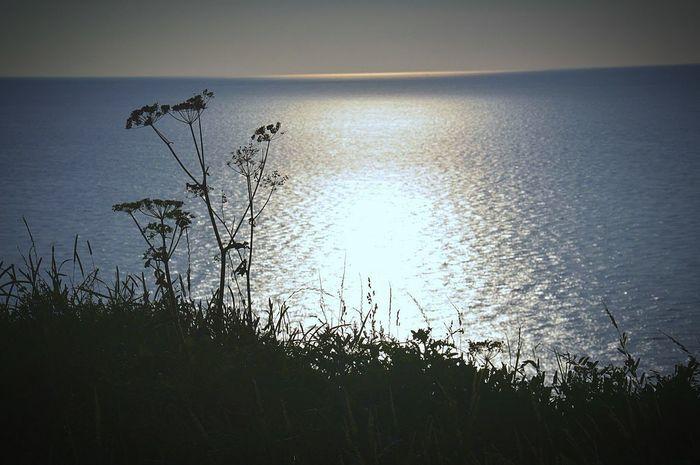 étretat Normandie France Mer Ciel Bleu Sea Bleu Sky Peace And Quiet Calme Paix Nature Relax Balades Plein Air Liberté Life Freedom Vie Espoir