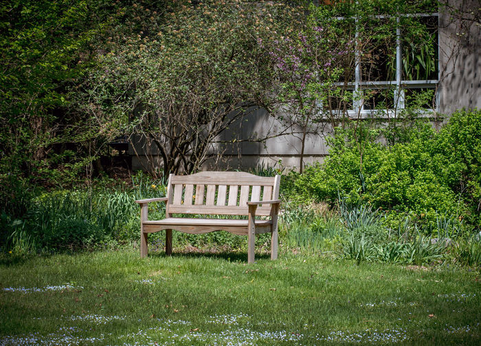 Empty bench on table by trees in yard