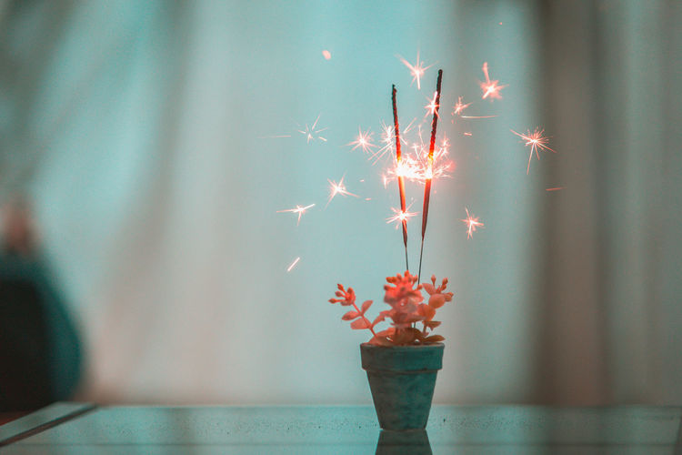 Close-Up Of Illuminated Sparklers In Potted Plant On Table At Home