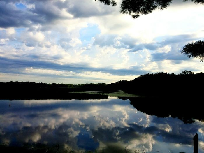 Showcase July Reflection Big River Wolf River Waterfront Nature Water Scape Beautiful Peace