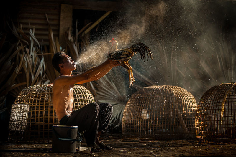 Full length of man blowing water on chicken
