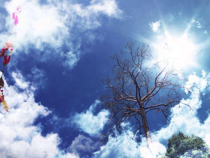 Clouds And Sky Bluesky