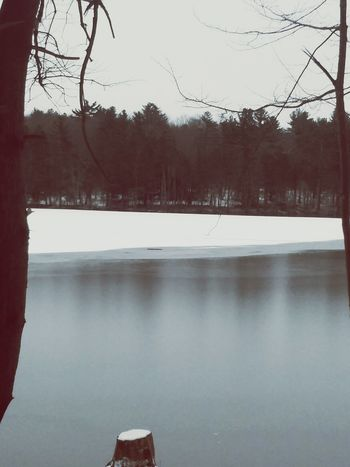 Reflection Water Tree Lake No People Nature Outdoors Connecticut Thelastgreenvalley Winter Forest Quietcorner Nature NewEnglandWinter Dirt Road Beauty In Nature Landscape Ice Tranquility Cold Temperature Scenics Reflection Lake Tranquil Scene