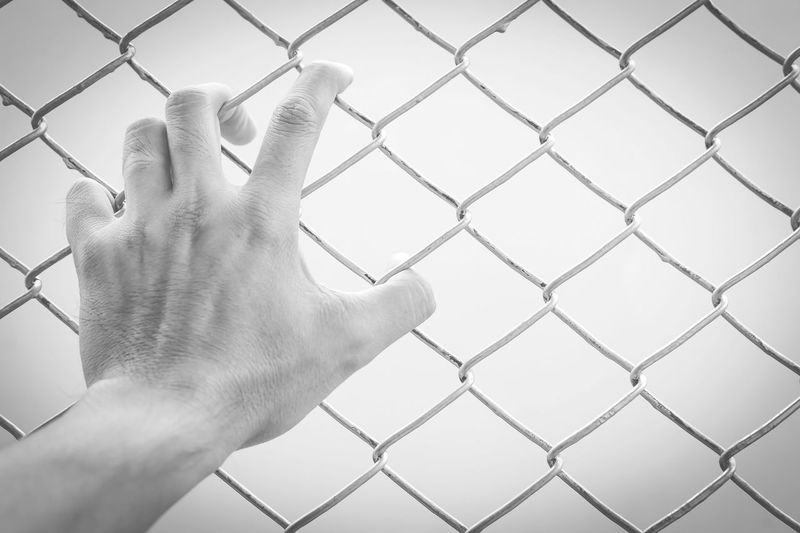 Hand holding on chain link fence, black and white concept Barrier Body Part Boundary Chainlink Fence Close-up Day Fence Finger Hand Human Body Part Human Finger Human Hand Human Limb Men Metal One Person Personal Perspective Protection Real People Safety Security
