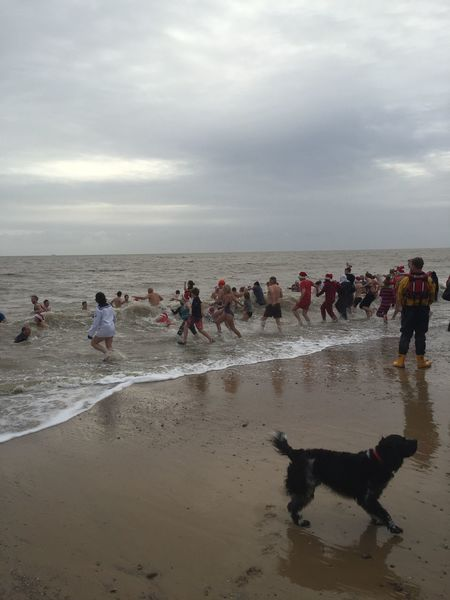 Animal Themes Beach Cloud - Sky Clouds Clouds And Sky Dog Domestic Animals Horizon Over Water Large Group Of People Leisure Activity Lifestyles Men Mixed Age Range Nature Person Sand Sea Shore Sky Southwold Togetherness Vacations Water Winter