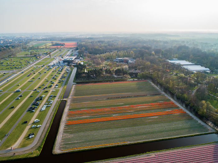 Tulips Cultivated Land Agriculture High Angle View Architecture Transportation Built Structure Building Exterior Aerial View Nature City Landscape Day Mode Of Transportation Sky Plant No People Environment Outdoors Field Road Scenics - Nature Cityscape