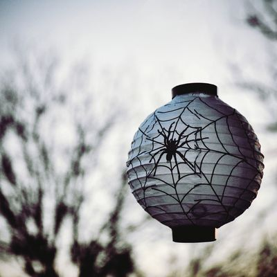 Halloween light with a twist 🎃 Levitating Halloween lamp Halloween Spider Levitation Lamp Gray Fall Cold Scary