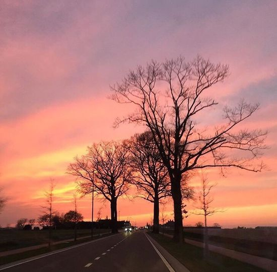 """""""I think they should change STOP signs to PAUSE signs."""" Jarod Kintz On The Road Road Sun Sunset Sunset Silhouettes Sunset_collection Enjoying Life Enjoying The Sun Enjoying The View Sky Skyporn Clouds And Sky Colors EyeEm Best Shots in Belgium"""