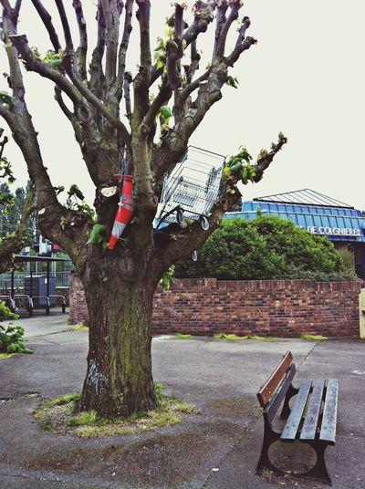 78, équipe de barbares, équipe de barbares!!! Taking Photos EyeEm Best Shots Streetart Trees