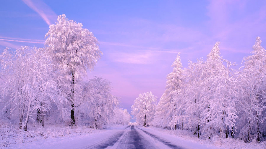 EyeEmNewHere Beauty In Nature Candy Cold Temperature Day Landscape Nature No People Outdoors Road Scenics Sky Snow The Way Forward Tranquil Scene Tranquility Transportation Tree Winter
