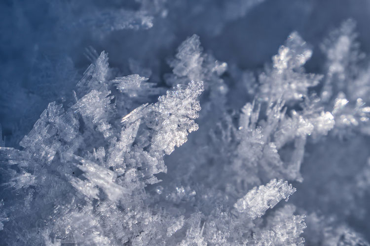 Ice crystals Ice Crystals Snowflake Cold Temperature Winter Snow Ice Frozen Close-up Crystal Nature No People White Color Focus On Foreground Beauty In Nature Day Plant Frost Selective Focus Outdoors Fir Tree Blizzard Full Frame Alps Tirol  Austria