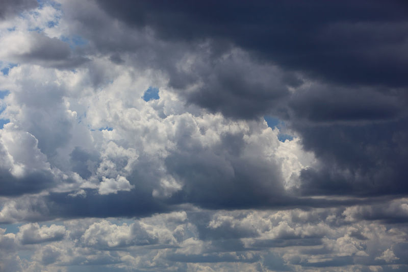 clouds in the sky, rain clouds, low pressure area Dark Clouds Atmosphere Backgrounds Beauty In Nature Climate Cloud - Sky Cloudscape Dark Dramatic Sky Environment Fluffy Low Pressure Area Meteorology Moody Sky Nature No People Ominous Outdoors Overcast Rain Rain Clouds Sky Storm Storm Cloud Thunderstorm Wind Wispy